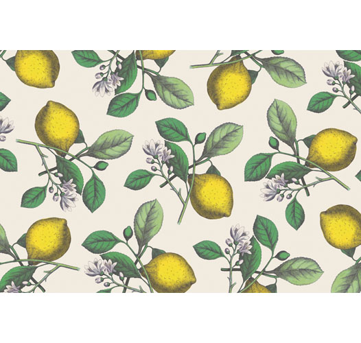 KITCHEN PAPERS LEMON PLACEMATS