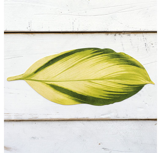 KITCHEN PAPERS TROPICAL LEAF ACCENT