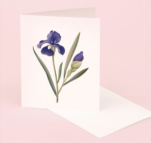 CLAP CLAP IRIS SCENTED CARDS / SET OF 5