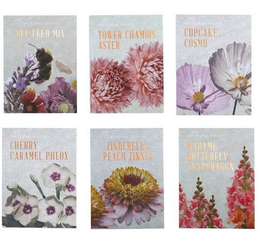 THE FLORAL SOCIETY ENGLISH GARDEN FLOWER SEEDS