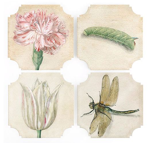 REPROTIQUE BLOOMS AND BUGS COASTERS - SET OF 4