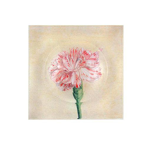 REPROTIQUE WATERCOLOR CARNATION TRINKET BOWL
