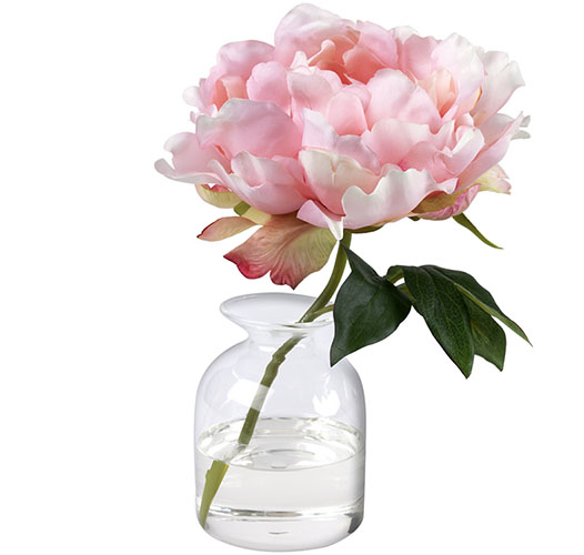 TOUCH OF PINK PEONY, BUD VASE